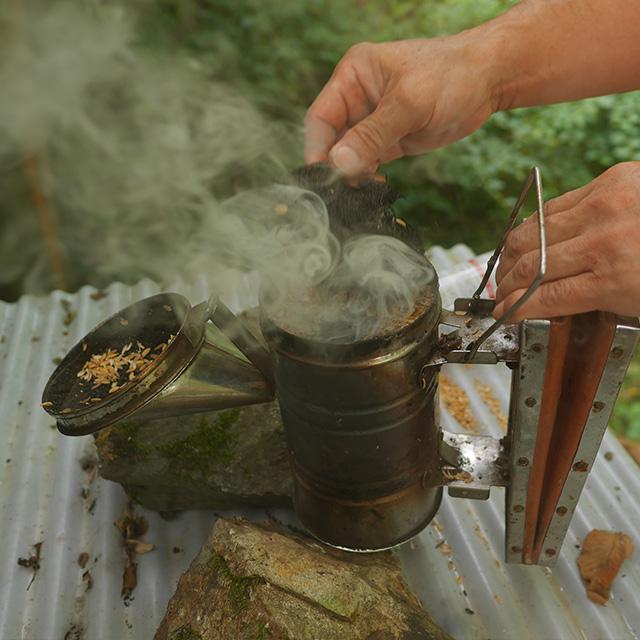 燻煙器の写真