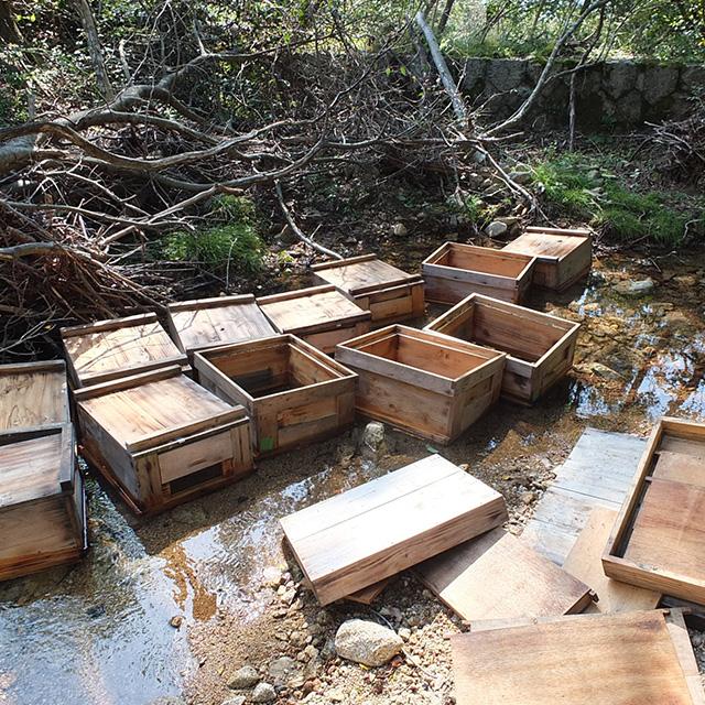 巣箱の洗浄